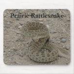Serpiente de cascabel de pradera R0009 arrollada Alfombrillas De Ratón