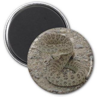 Serpiente de cascabel de pradera R0009 Imán Redondo 5 Cm