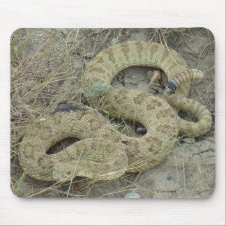 Serpiente de cascabel de pradera R0020 Alfombrilla De Ratón
