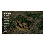 Serpiente de cascabel de pradera tarjetas de visita