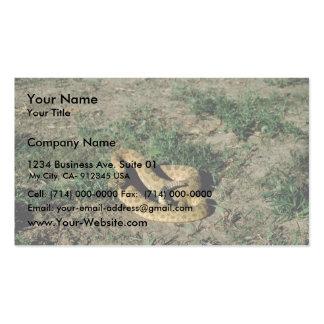 Serpiente de cascabel de pradera tarjeta de visita