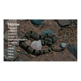 Serpiente de cascabel de roca congregada tarjetas de visita