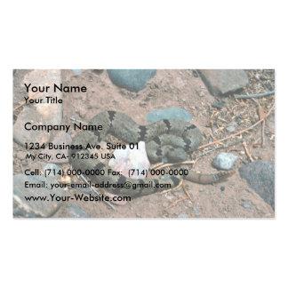 Serpiente de cascabel de roca congregada tarjeta de visita