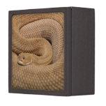Serpiente de cascabel del basilisco caja de recuerdo de calidad