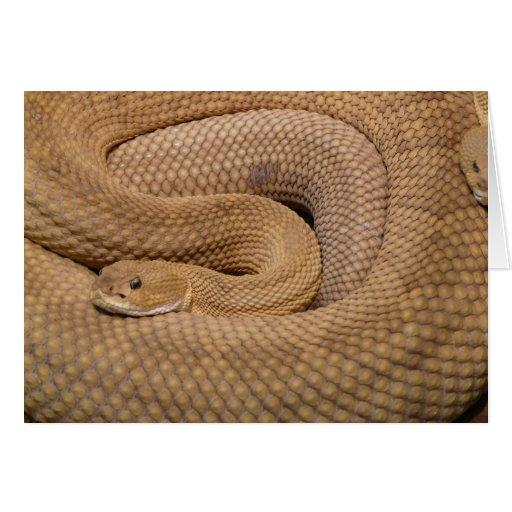 Serpiente de cascabel del basilisco felicitación