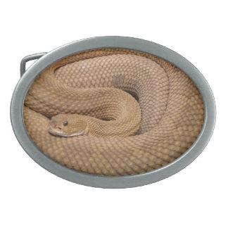 Serpiente de cascabel del basilisco hebillas de cinturon