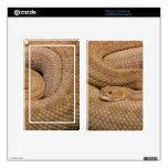 Serpiente de cascabel del basilisco kindle fire skins