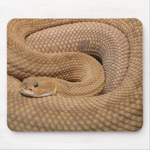 Serpiente de cascabel del basilisco tapete de ratón