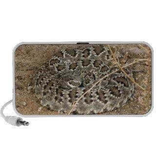 Serpiente de cascabel del Mohave del ~ de Kimberly Mini Altavoces