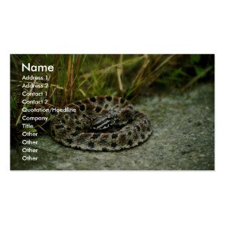 Serpiente de cascabel del Pigmy Tarjeta De Visita
