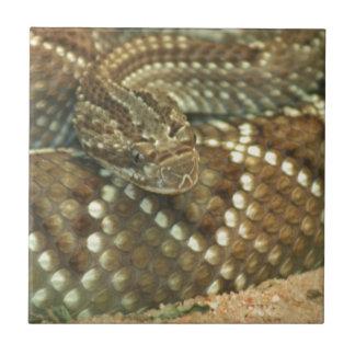 Serpiente de cascabel en espiral teja  ceramica