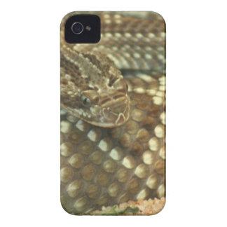 Serpiente de cascabel en espiral Case-Mate iPhone 4 protector
