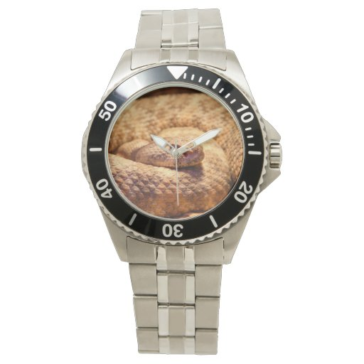 Serpiente de cascabel manchada asustadiza relojes de pulsera
