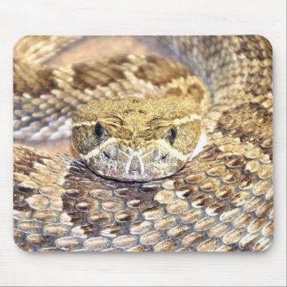 Serpiente de cascabel mouse pad