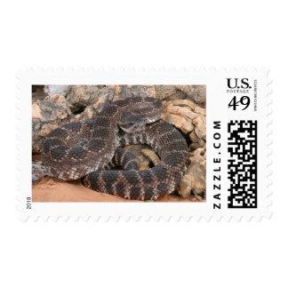 Serpiente de cascabel pacífica meridional sello