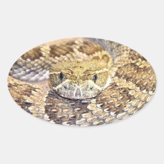 Serpiente de cascabel pegatina ovalada