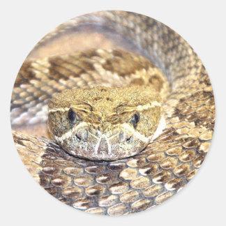 Serpiente de cascabel pegatina redonda