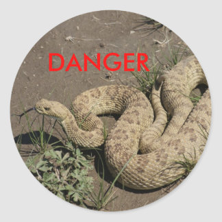 Serpiente de cascabel R0006 Etiquetas Redondas