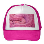 Serpiente de cascabel rosada del basilisco gorra