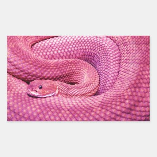 Serpiente de cascabel rosada del basilisco rectangular altavoz