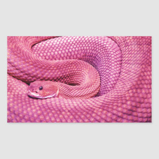 Serpiente de cascabel rosada del basilisco pegatina rectangular