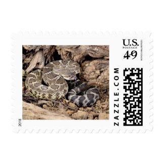 Serpiente de cascabel sello