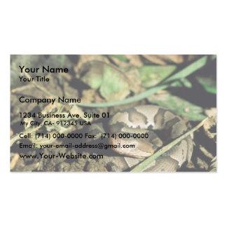 Serpiente de Copperhead Plantillas De Tarjetas De Visita