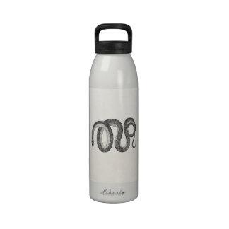 Serpiente de cristal del vintage - espacio en botella de agua reutilizable