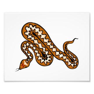 Serpiente de Diamondback Fotografia