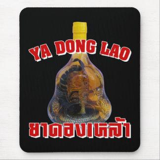 Serpiente de la cobra contra el Lao de Yadong del