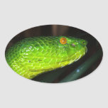 Serpiente de la víbora del hoyo de Stejneger verde Pegatina Ovalada