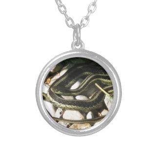 Serpiente de liga en rocas collar plateado