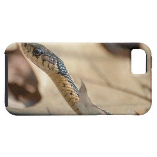 Serpiente de liga iPhone 5 Case-Mate cobertura