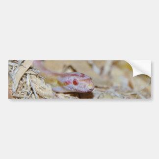 Serpiente de maíz de color claro etiqueta de parachoque