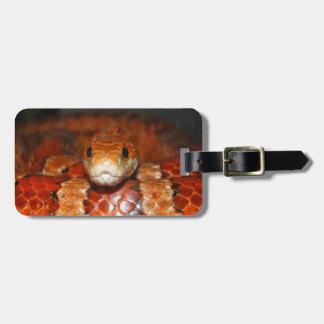 Serpiente de maíz etiquetas bolsas