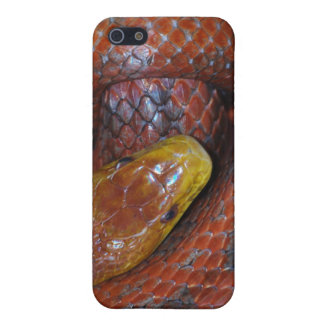Serpiente de rata roja iPhone 5 cárcasa
