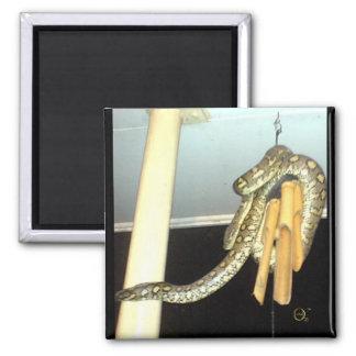 Serpiente del pitón de la alfombra imán cuadrado