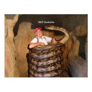 Serpiente grande grande de la serpiente QLD Tarjetas Postales