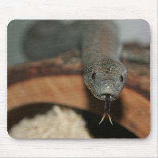 Serpiente Mousepad Alfombrillas De Raton