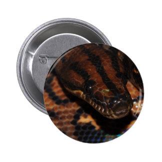 Serpiente Chapa Redonda 5 Cm