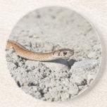 Serpiente septentrional de Brown Posavasos Personalizados
