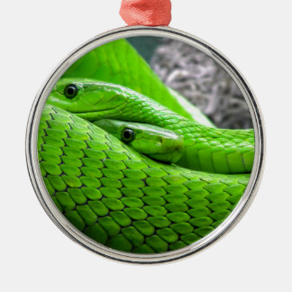 Serpiente verde adorno redondo plateado