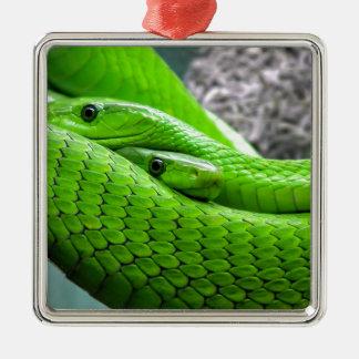 Serpiente verde adorno cuadrado plateado