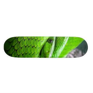 Serpiente verde tablas de skate
