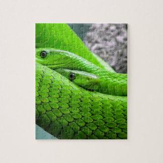 Serpiente verde rompecabeza con fotos