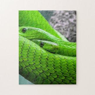 Serpiente verde puzzles con fotos