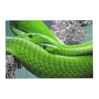 Serpiente verde salvamanteles
