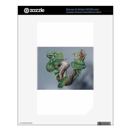 Serpiente verde y rana calcomanía para el NOOK color