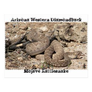 Serpientes de Arizona Postal