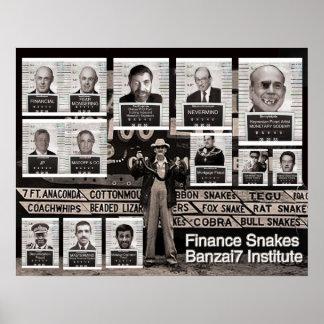 Serpientes de las finanzas Banzai7 Posters